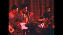 "Gunsmoke blues – Muddy Waters, Big Mama Thornton, Big Joe Turner, George ""Harmonica"" Smith"