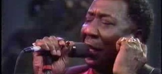 Muddy Waters   The Living Legends of Blues