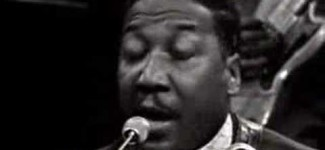 Muddy Waters – Got My Mojo Workin'
