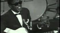 American Folk Blues Festivals 1963-1966: The British Tours